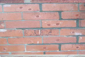 Mortar joints starting to dry out  - Rem-tie Ltd in North East, Newcastle, Durham, Sunderland, North Shields.